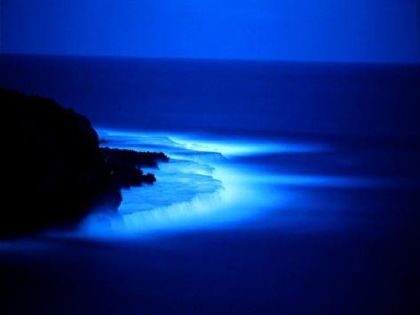 night of gods